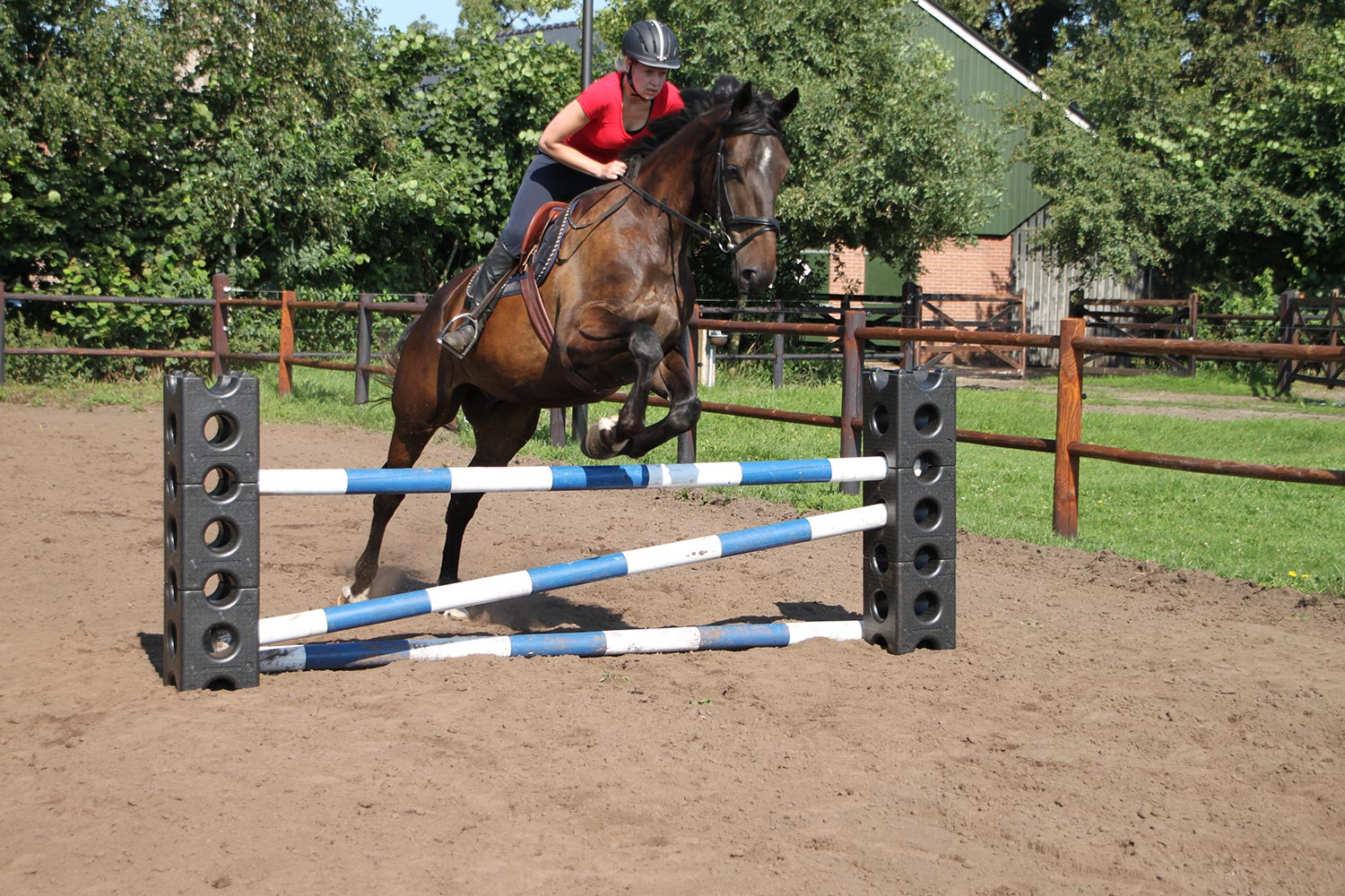 Horse jumps - Jump materials for poney and horse