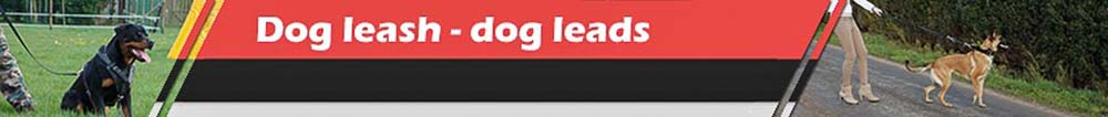 Dog leash - dogleads