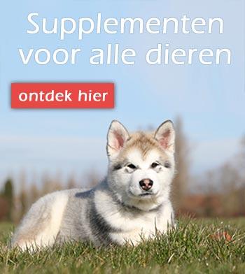 Voedingssupplementen voor dieren