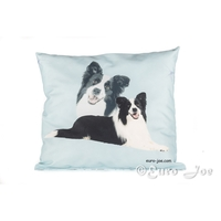 Rectangular Border Collie Pillow