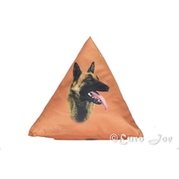 Malinois Pyramid Pillow