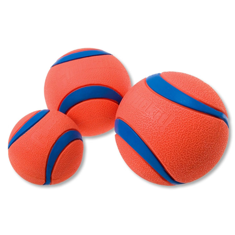 Magnet Ball Dog Toy