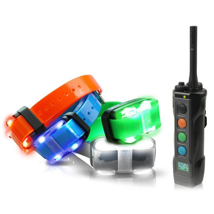 Elektronisches Hundehalsband - Hundehalsband - Dogtra