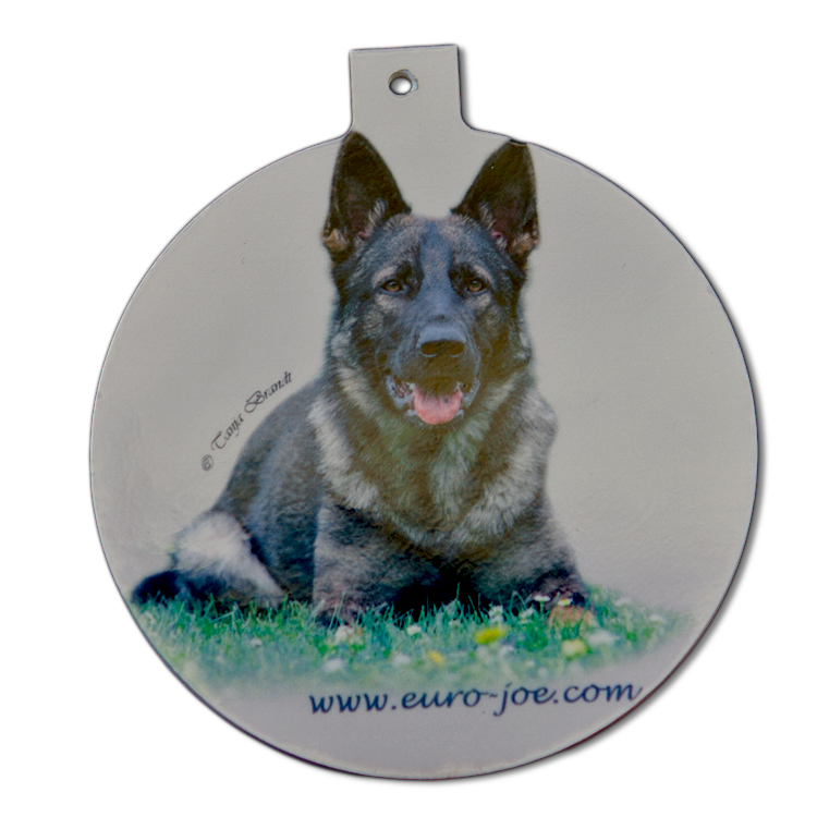 dog tags or personalised ID tags for your pets