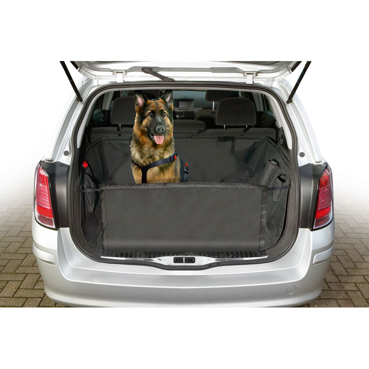 Car accessories for dogs to transport them safely in the car