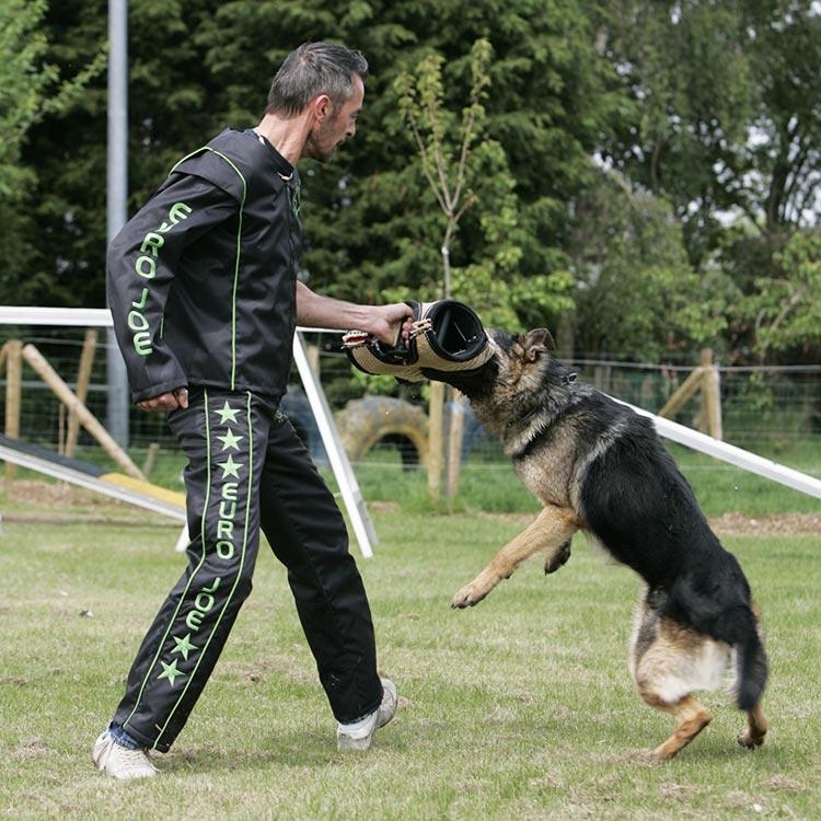 trainingsmateriaal voor honden, van de gewone liefhebber tot de professional.