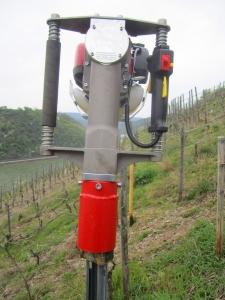 Palenrammer_wijngaard