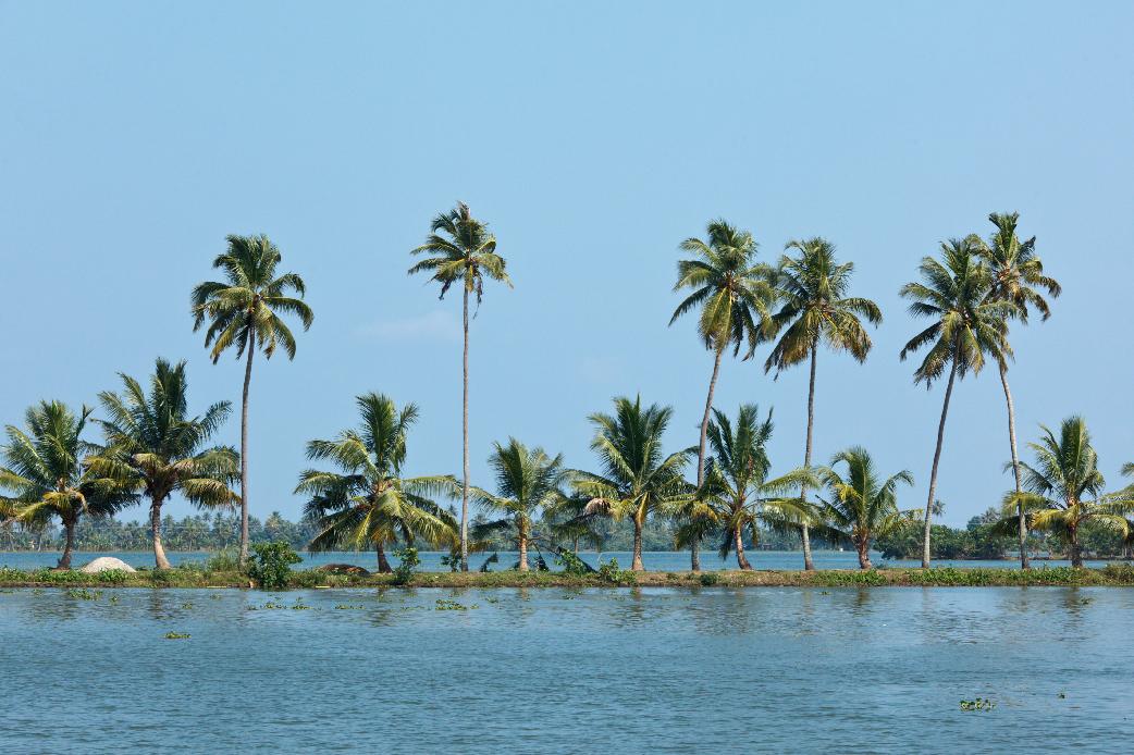 Kerala India Sfeerbeeld 7